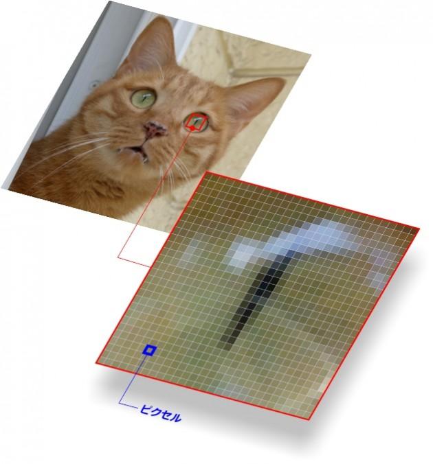 ビットマップ画像の構造図