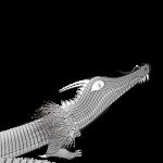 龍のイラスト ワイヤーフレーム画像