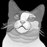 ハナちゃん イラスト その5 ワイヤーフレーム画像