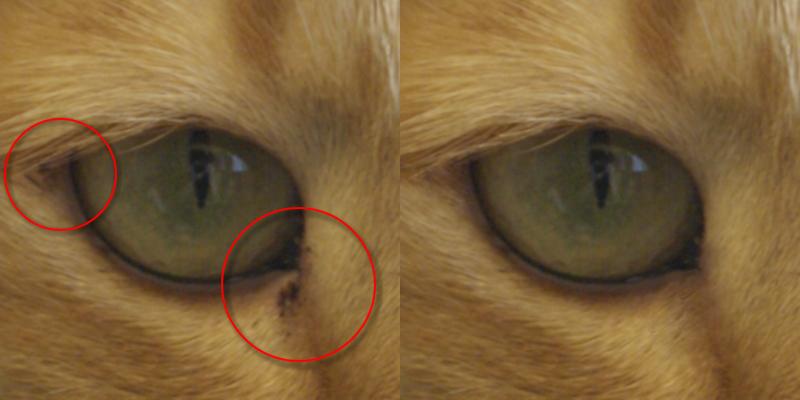 修復クローンブラシの結果画像